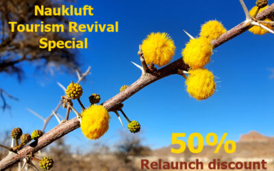 Naukluft invites fans with Revival Special