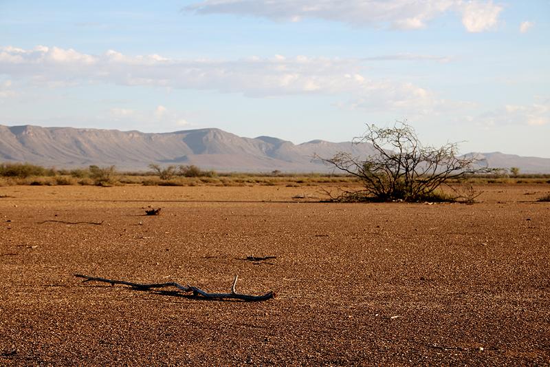 Ebene ohne Weide am Fuße der Naukluft-Berge auf der Farm BüllsPort im südlichen Zentrum Namibias.  Foto: Sven-Eric Stender