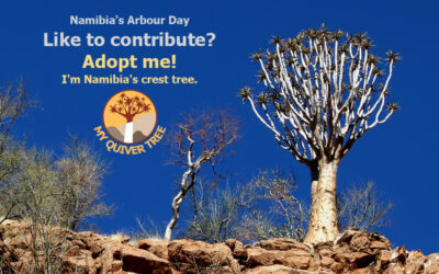 Win a quiver tree – on Namibia's Arbour Day